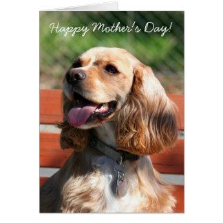 Cartão feliz de cocker spaniel do dia das mães