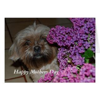 Cartão Feliz dia das mães de Tessi