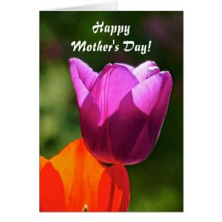 Cartão Feliz dia das mães! Tulipa na luz brilhante