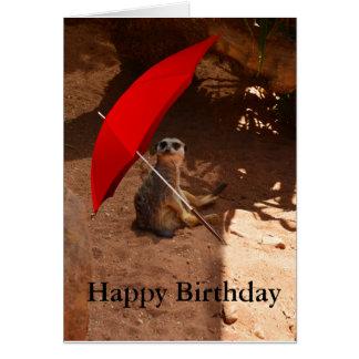Cartão feliz do aniversário de Meerkat