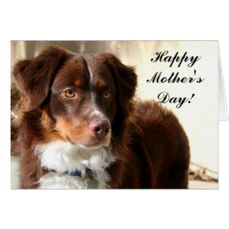 Cartão feliz do Aussie do dia das mães