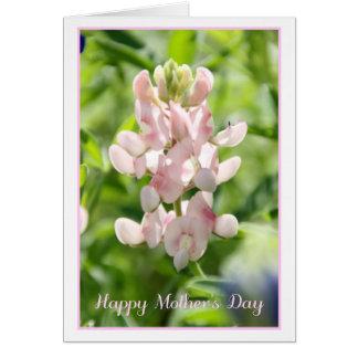 Cartão feliz do Bluebonnet do rosa do dia das mães