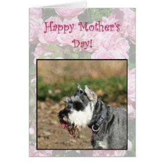 Cartão feliz do cão do Schnauzer do dia das mães