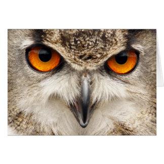 Cartão feliz do dia dos pais com os olhos da coruj