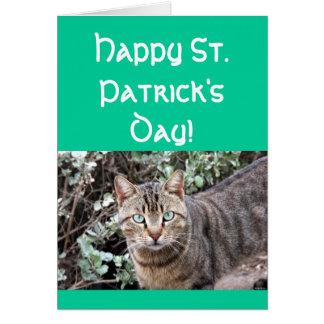 Cartão feliz do gato do dia do St. Patricks