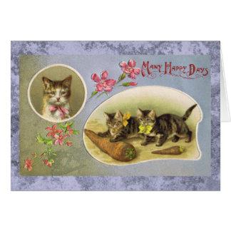 Cartão feliz do gato do vintage de muitos dias