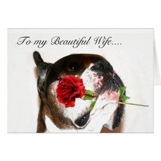 Cartão feliz do pugilista da esposa do aniversário