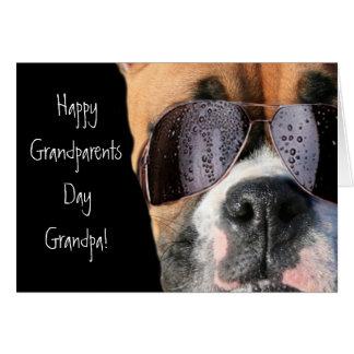 Cartão feliz do pugilista do vovô do dia das avós