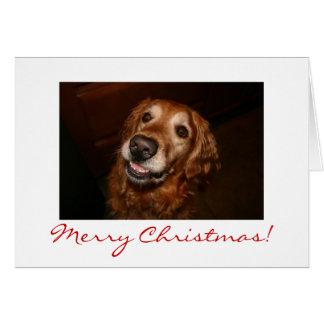 Cartão Feliz Natal de sorriso do cão