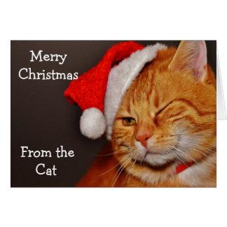Cartão Feliz Natal do gato