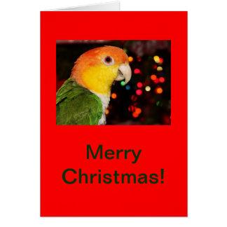 Cartão Feliz Natal inchado branco do papagaio do Caique