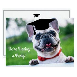 Cartão Festa de formatura engraçada da foto do cão do