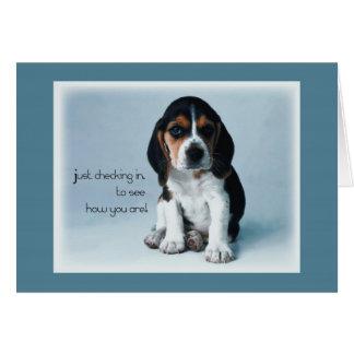 Cartão Filhote de cachorro 2769 que verifica dentro