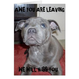 Cartão Filhote de cachorro azul de Staffordshire bull