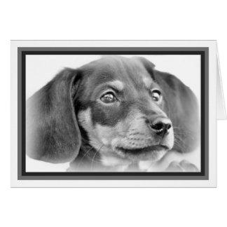 Cartão Filhote de cachorro B&W do Dachshund