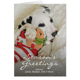Cartão Filhote de cachorro de Dalmation com meia do Natal