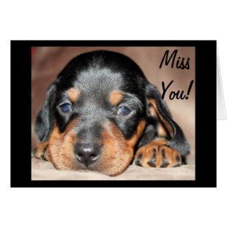 Cartão Filhote de cachorro de Doxie