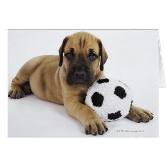 Cartão Filhote de cachorro de great dane com bola de