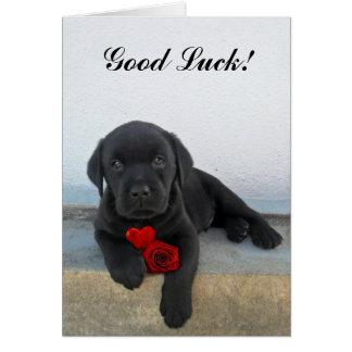 Cartão Filhote de cachorro de Labrador da boa sorte