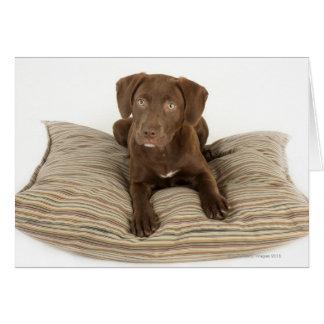 Cartão Filhote de cachorro de quatro meses do laboratório