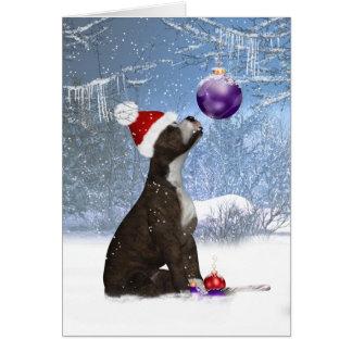 Cartão Filhote de cachorro de Staffordshire bull terrier,