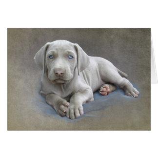 Cartão Filhote de cachorro de Weimaraner