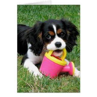 Cartão Filhote de cachorro descuidado