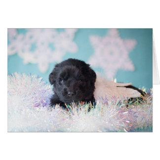 Cartão Filhote de cachorro do anjo do Natal