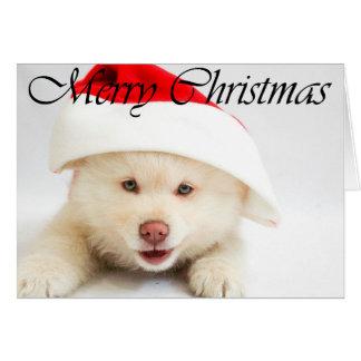 Cartão Filhote de cachorro do Feliz Natal no chapéu do