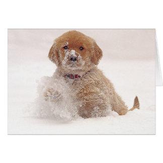 Cartão Filhote de cachorro do golden retriever na neve