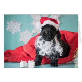 Cartão Filhote de cachorro do papai noel do Natal