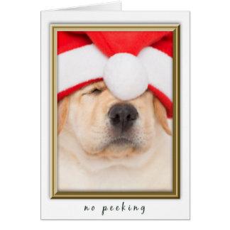 Cartão Filhote de cachorro do papai noel nenhum espreitar