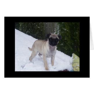 Cartão Filhote de cachorro do Pug