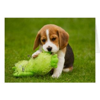 Cartão Filhote de cachorro doce do lebreiro com brinquedo