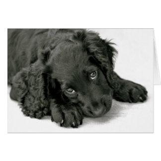 Cartão Filhote de cachorro muito bonito