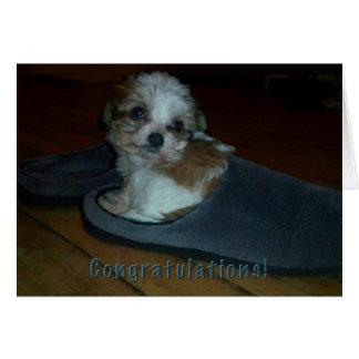 Cartão Filhote de cachorro no deslizador, adopção do