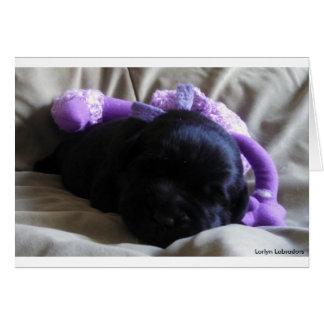Cartão Filhote de cachorro preto de labrador retriever em
