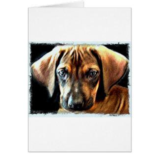 Cartão filhote de cachorro rhodesian do ridgeback