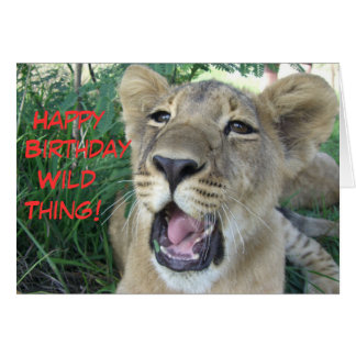 Cartão Filhote de leão selvagem da coisa do feliz