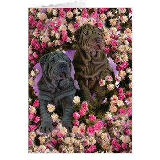 Cartão Filhotes de cachorro bonitos do pei de Shar em uma