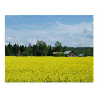 Cartão finlandês do campo