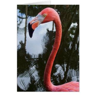 Cartão Flamingo cor-de-rosa