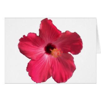 Cartão Flor cor-de-rosa 201711e do hibiscus