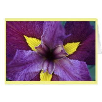 Cartão Flor da íris