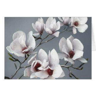 Cartão Flor da magnólia do primavera, brandamente cinza