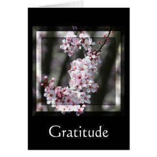 Cartão Flor de cerejeira da gratitude floral