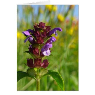 Cartão Flor de florescência do dia Sunshiny