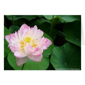 Cartão Flor de Lotus