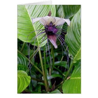 Cartão Flor do bastão