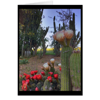 Cartão Flor do cacto